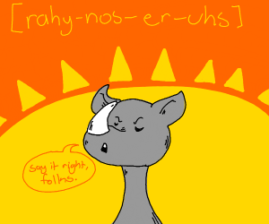 [ rahy-nos-er-uh s ]