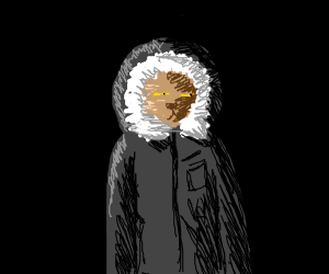 suspicious cat in winter clothes