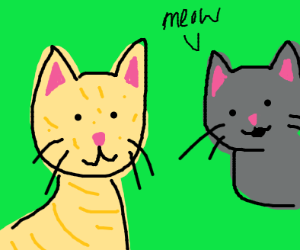 cream colored cat w/ gray cat saying meow