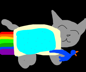 nyan cat has pet bird