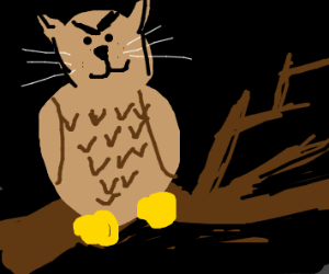 evil kittyowl