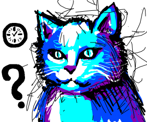 Blue cat with fluff asks what the time is