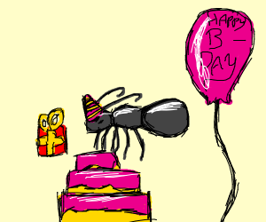 An ants birthday