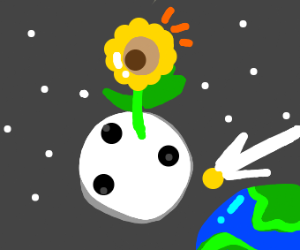 Giant flower grows on the moon