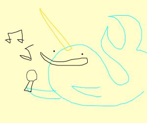 narwhal karoake
