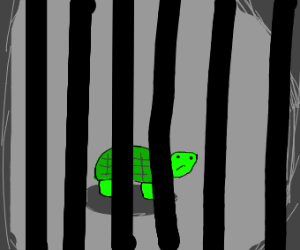 turtle in jail