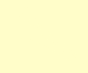 literally a blank panel