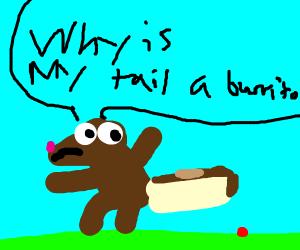 beaver with burrito tail