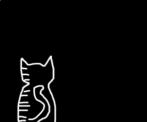 sad cat in the dark