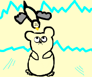 seagull hates polarbear