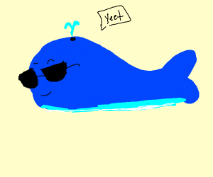 One cool whale