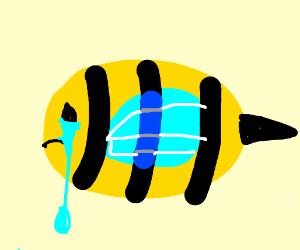 a sad bee