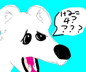 polar bear is confused over maths