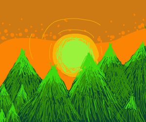 sun setting over a forest