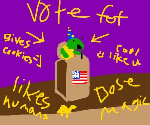 turtle wizard wants to be president