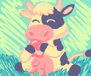 Cute Cow eats Jammed Toast