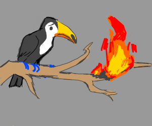 tucan's branch is on fire