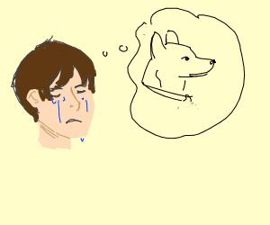 Mourning boy hallucinates his dog :(