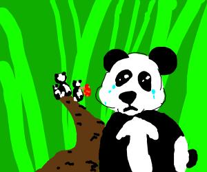 Panda sad about family