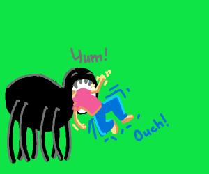 spider eats human