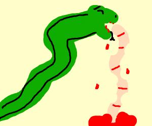 snake vomits its intestines