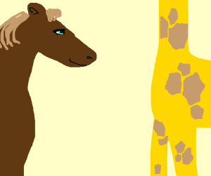 Horse and giraffe