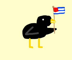Black Bird runs for President