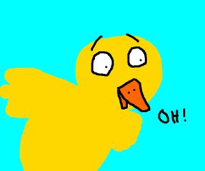 Yellow bird is shocked