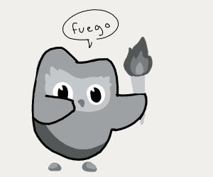 Duoligo is burning something in fire