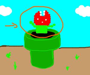 pixelated pirhana plant
