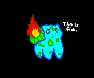 Fire Type Starter Pokemon