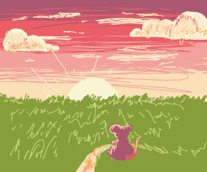 Mouse in a beautiful sunset