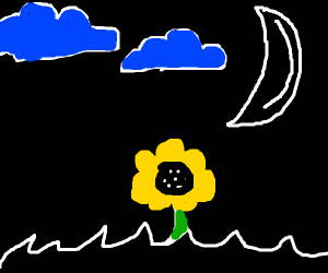 Flower with moon and cloud