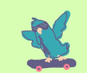 bird skateboarding