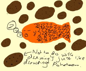 Sleeping fish