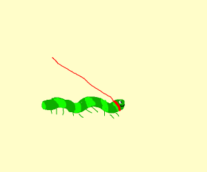 Pet Caterpillar