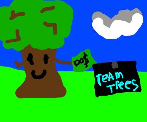 tree donates money
