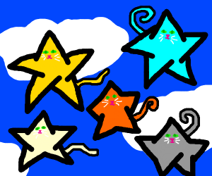 5 star cats