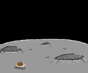 A lonely snail on the moon