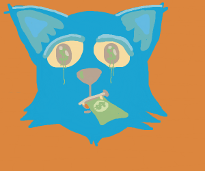 Cat eating money