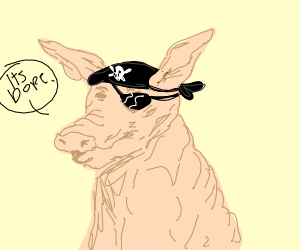 A pirate pig saying it's dope