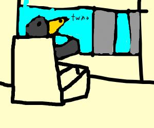 Crow Driving