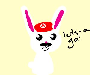 Mario possessed  a rabbit