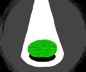 Watermelon in the spotlight