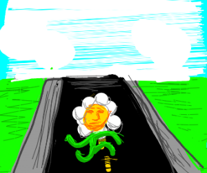 Flower running on a road