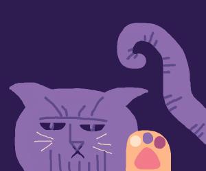 Thanos kitty thanos kitty