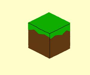 minecraft grass block