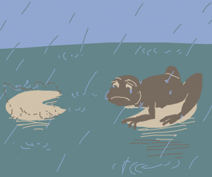 A frog in the rain is so alone