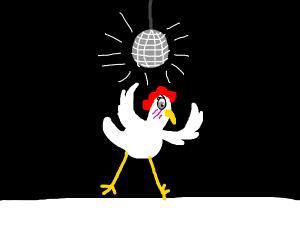Anime chicken disco