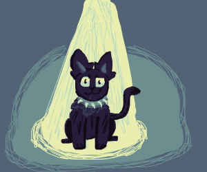 Black cat on a spotlight.